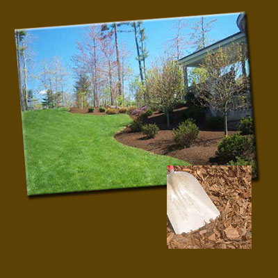 snohomish county bark mulch photo